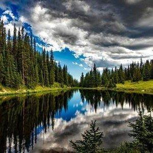 Cuidado de nuestros bosques, educación ambiental