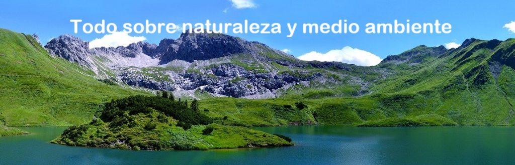 Todo sobre naturaleza y medio ambiente.