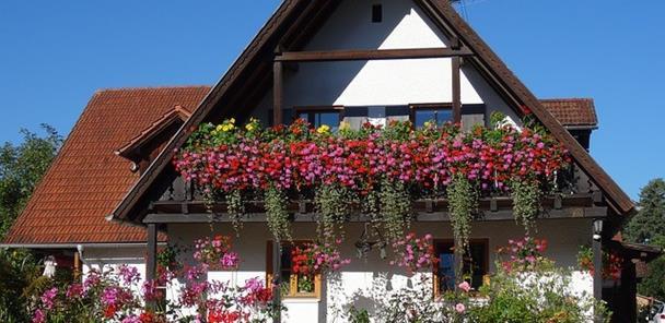 Las terrazas o balcones con flores siempre son uno de los atractivos de cualquier casa o piso con elegancia.